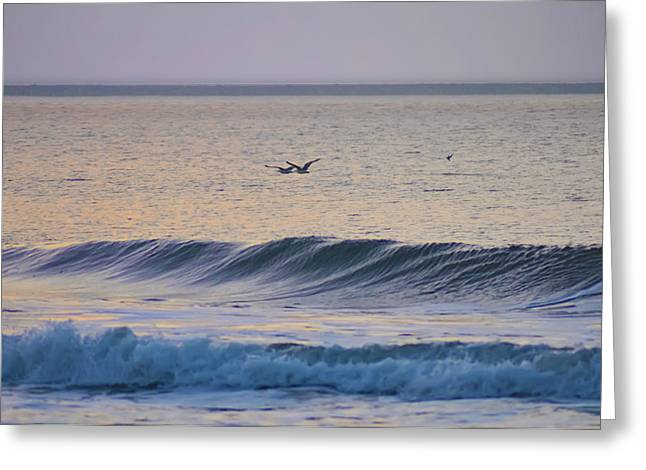Over The Waves Greeting Card by Bill Cannon