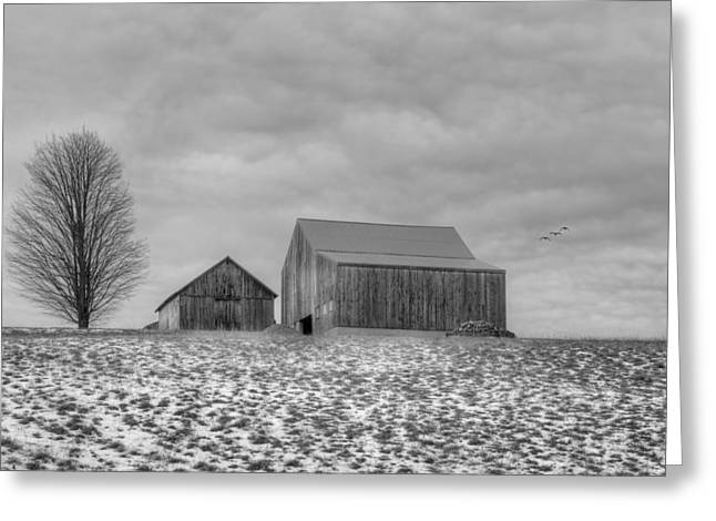 Overcast Bw Greeting Card
