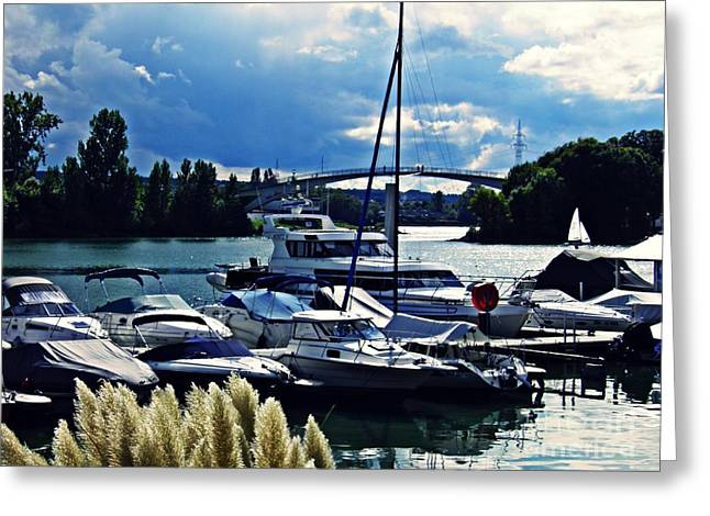 Overcast Day At The Marina  Greeting Card