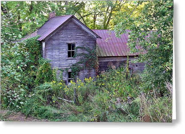 Overgrown Abandoned 1800 Farm House Greeting Card by Douglas Barnett