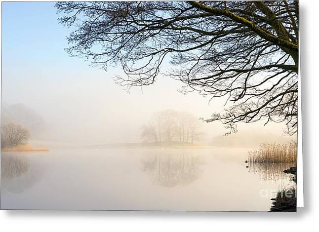 Overhang Esthwaite Water Lake District Greeting Card
