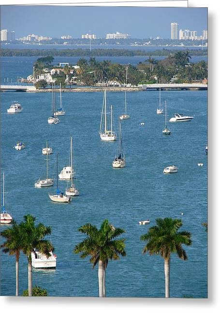 Overlooking A Miami Marina Greeting Card