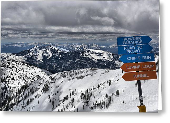 Overlooking Mineral Basin Greeting Card