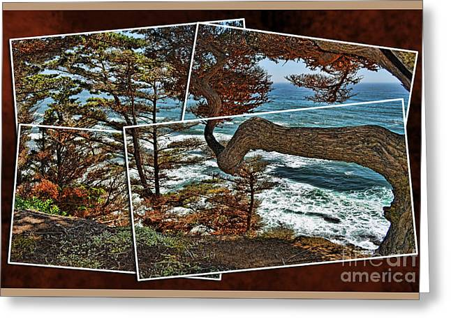 Overlooking The Pacific Ocean From Fitzgerald Reserve  Greeting Card by Jim Fitzpatrick