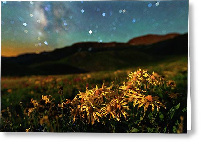 Overnight Beauty On Black Bear Pass Greeting Card by Mike Berenson