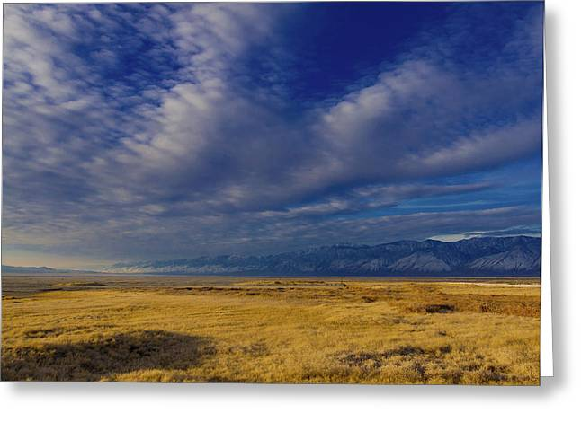 Owens Lake And The Coso Mountains Greeting Card