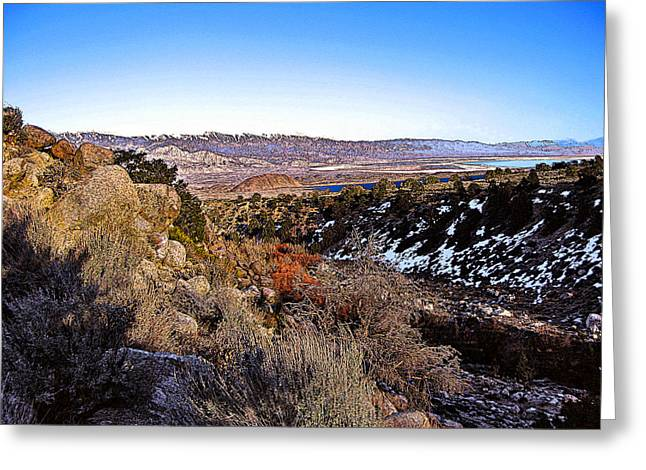 Greeting Card featuring the painting Owens Lake Winter by Larry Darnell