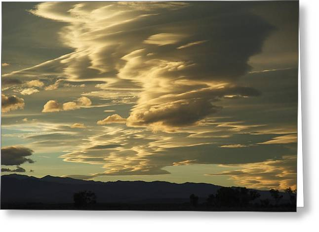 Owens Valley Evening Greeting Card by Alpha Pup