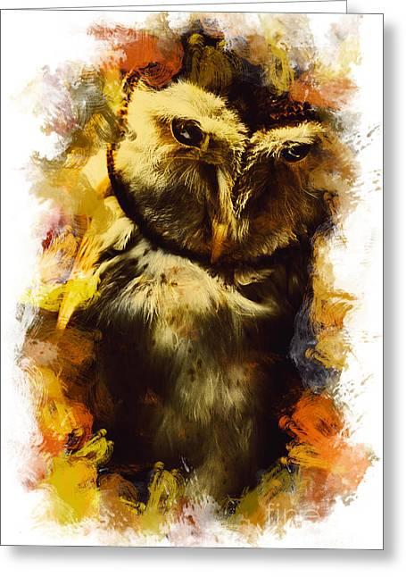 Owl Birds Of The Night Greeting Card