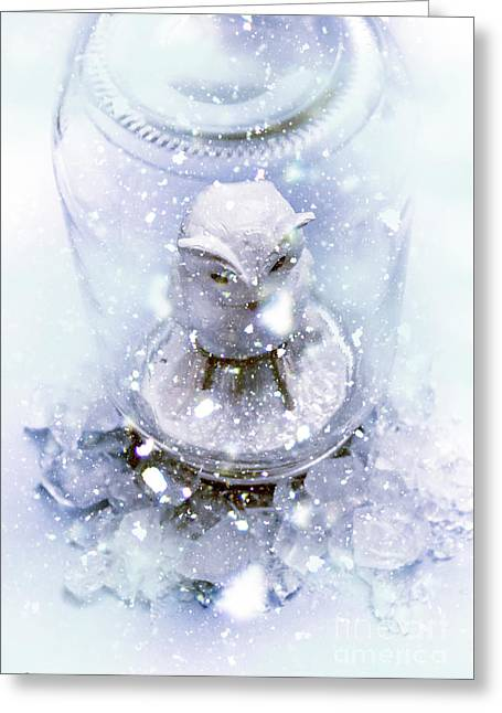 Owl Captive In Winters Frost Greeting Card by Jorgo Photography - Wall Art Gallery