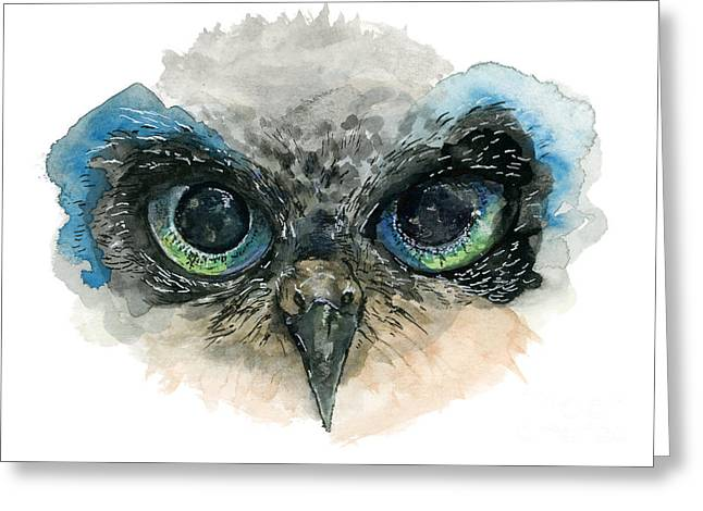 Owl Eyes Greeting Card