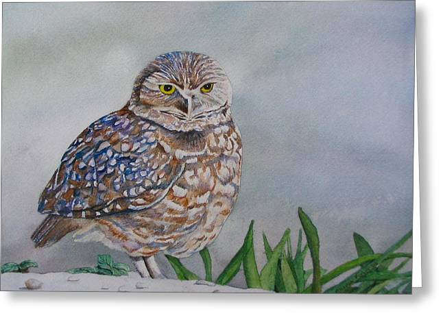 Owl Greeting Card by Sharon Farber