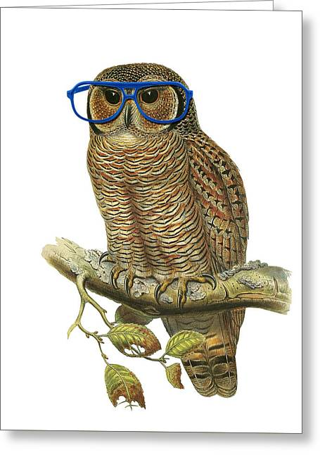 Owl Sitting On A Branch With Blue Glasses Greeting Card by Madame Memento