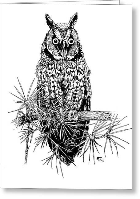 owl Greeting Card by Stephen Taylor