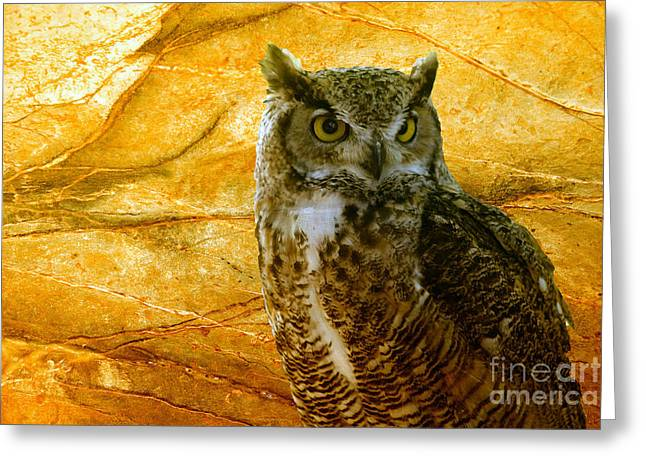 Owl Greeting Card by Teresa Zieba