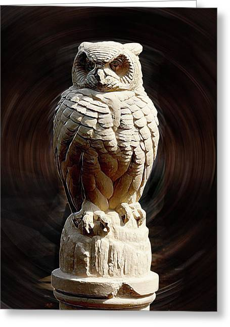 Owl Greeting Card by Terry Cork