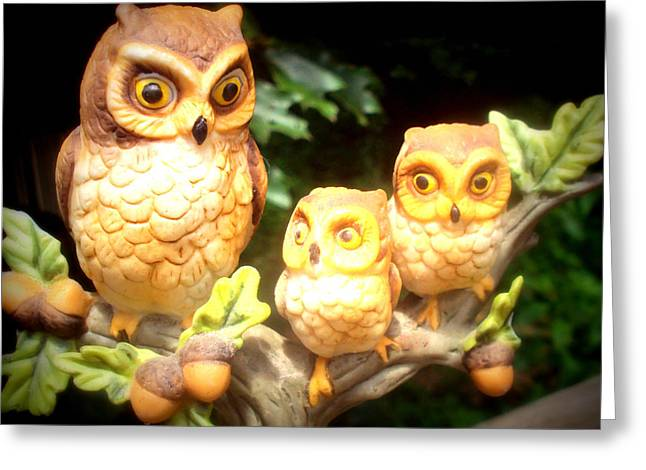 Owl Trio Greeting Card by Jennifer Coleman