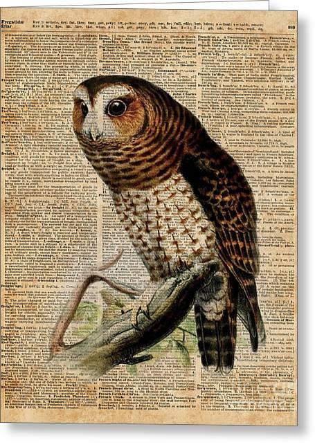 Owl Vintage Illustration Over Old Encyclopedia Page Greeting Card
