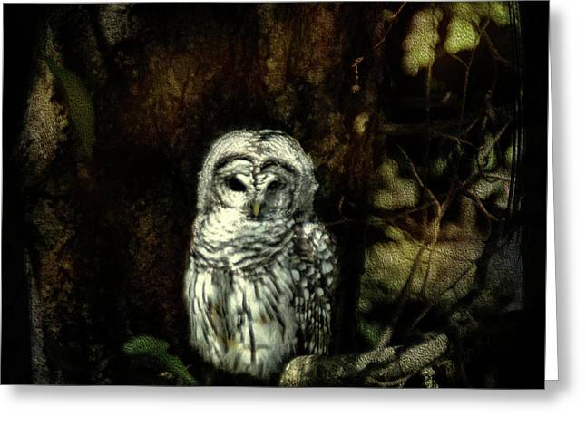 When The Owl Sings Greeting Card