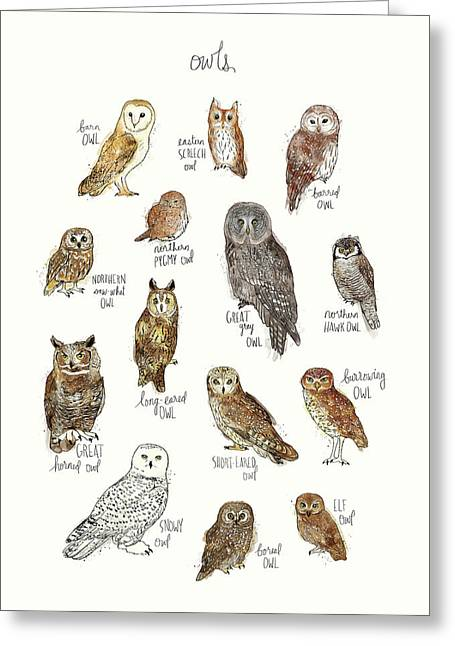 Owls Greeting Card by Amy Hamilton