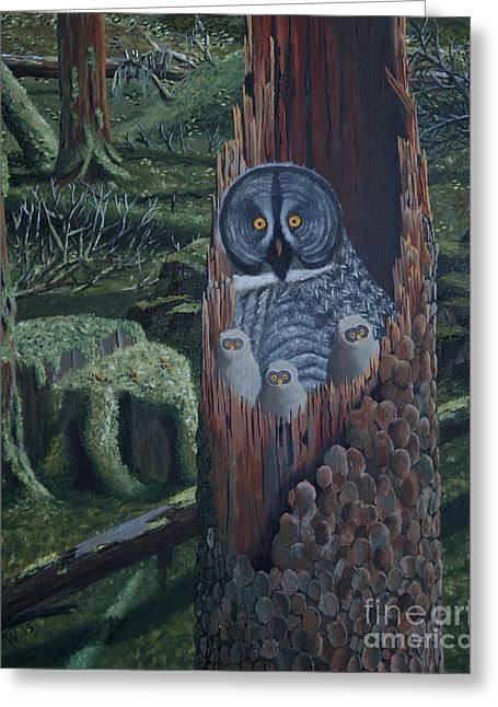 Owls In A Rainforest Greeting Card by Stanza Widen