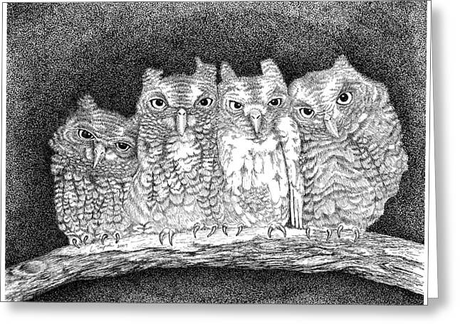 Owls Greeting Card by Lawrence Tripoli