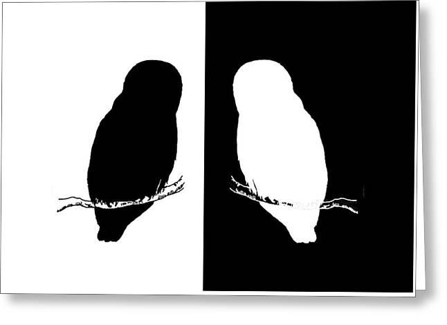 Owls Greeting Card by Mordax Furittus