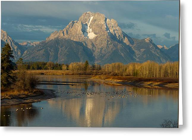 Oxbow Bend Greeting Card by Brian Governale