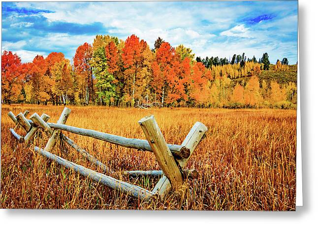 Oxbow Bend Fall Color Greeting Card