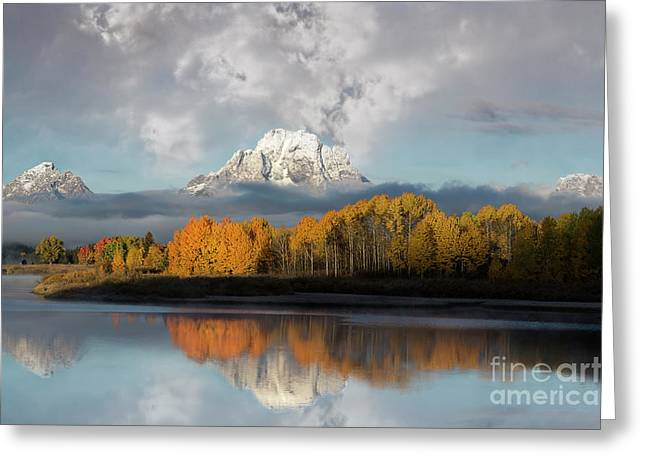 Oxbow Bend Majestic Reflection Greeting Card