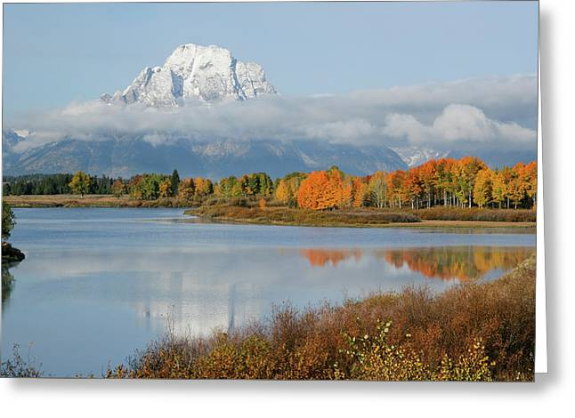 Oxbow Bend  Greeting Card