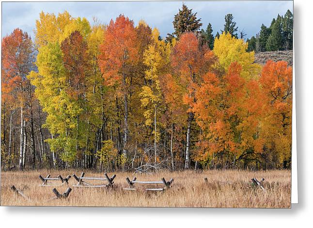 Greeting Card featuring the photograph Oxbow Fall Colors by Chuck Jason
