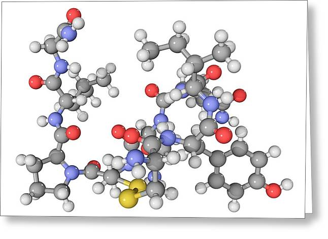 Chemical Compound Greeting Cards - Oxytocin Neurotransmitter Molecule Greeting Card by Laguna Design