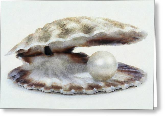 Oyster With Pearl Greeting Card