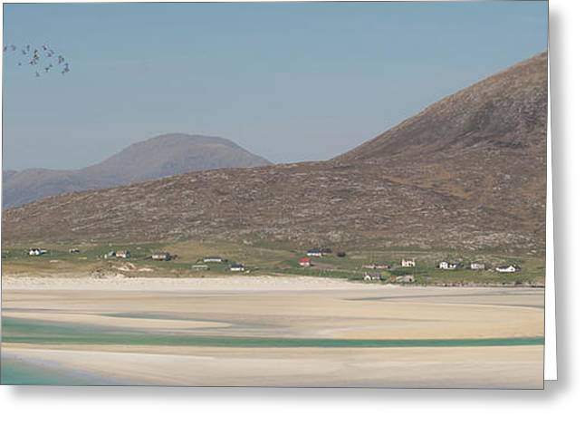 Oystercatchers Over Luskentyre Greeting Card