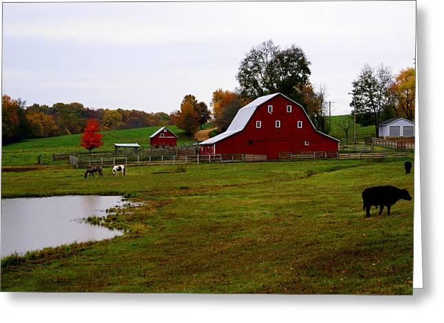 Ozark Farm Greeting Card by Marty Koch