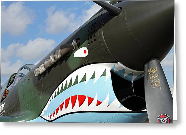 P-40 Flying Tigers Greeting Card by Mark Grayden