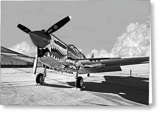 P-40 Warhawk - Flying Tigers Greeting Card