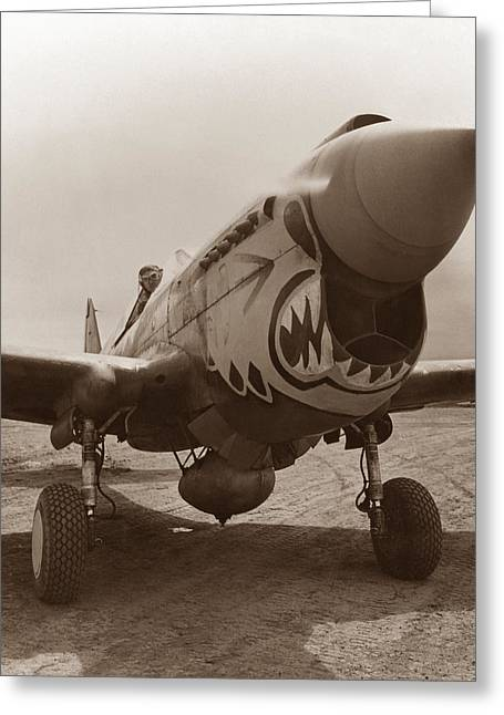 P-40 Warhawk - World War 2 Greeting Card by War Is Hell Store