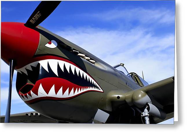 P-51 Mustang Aircraft Greeting Card by Daniel Hagerman