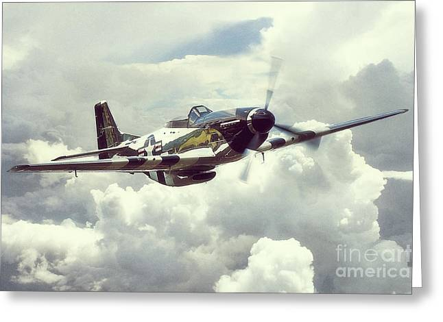 P51 Mustang - Quick Silver Greeting Card