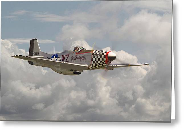 P51 Mustang - Ww2 Classic Icon Greeting Card