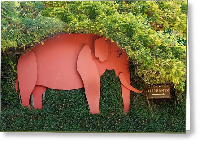 Pachyderm Sign Greeting Card