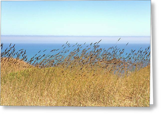 Pacific Breeze Sonoma Cliffs Greeting Card