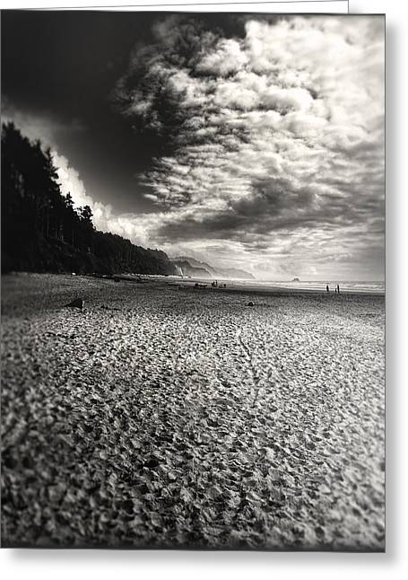 Greeting Card featuring the photograph Pacific Coast Highway Oregon by Douglas MooreZart