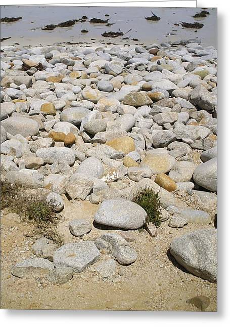 Pacific Grove, Ca Greeting Card