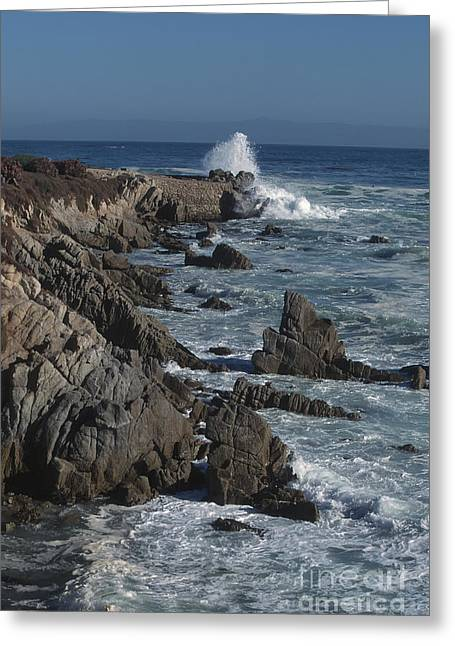 Greeting Card featuring the photograph Pacific Grove Seascape by Stan and Anne Foster