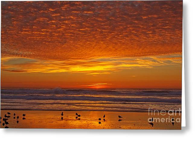Pacific On Fire Greeting Card by Tim Moore
