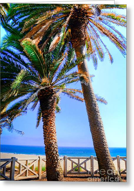 Pacific Palisades Park Greeting Card by Kelly Wade