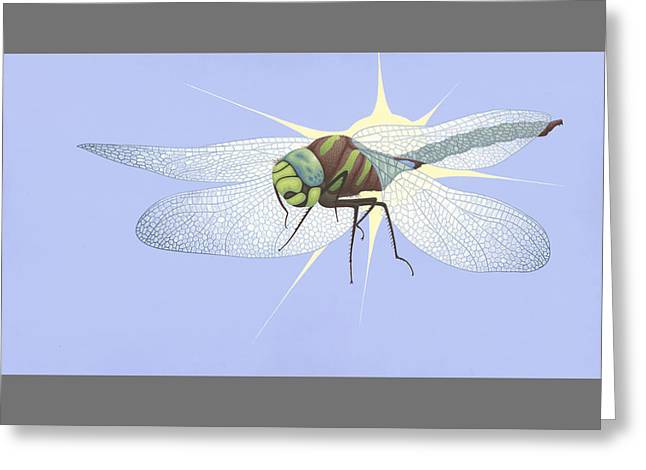 Paddle-tailed Darner Greeting Card by Nathan Marcy